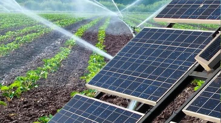 Más renovables para el agro