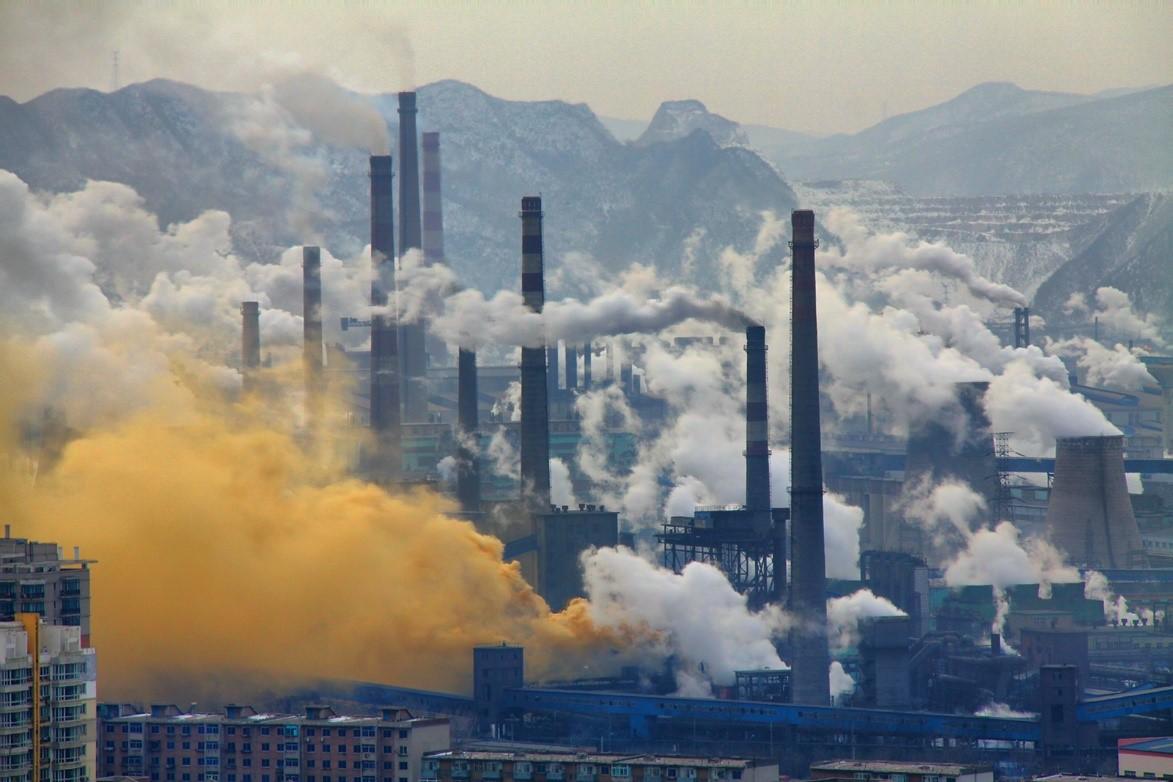 Duro golpe a los delitos medioambientales en China