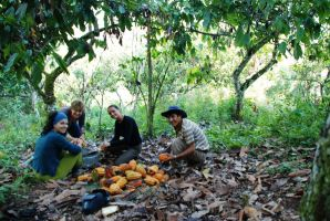 El ecoturismo y el desarrollo sostenible