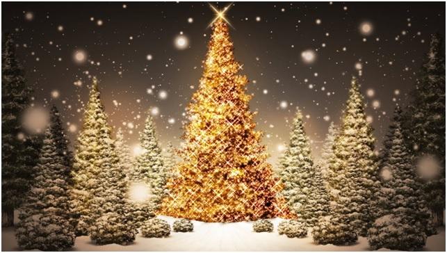 Costo ambiental de las fiestas de Navidad y Año Nuevo