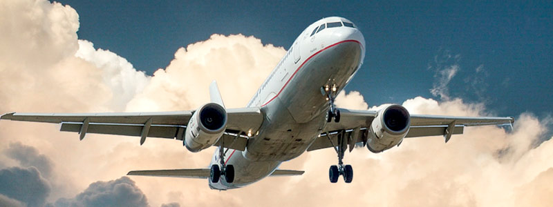 Biocombustible para aviones extraído de plantas