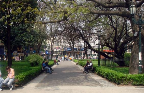 Buscan recuperar la flora nativa en la Ciudad de Buenos Aires con 10 mil ejemplares