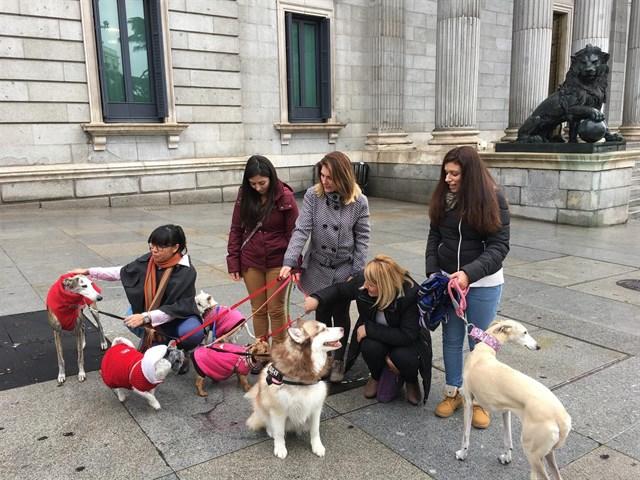 PACMA celebra la prohibición de mutilación a los perros y reclama una ley marco de protección animal