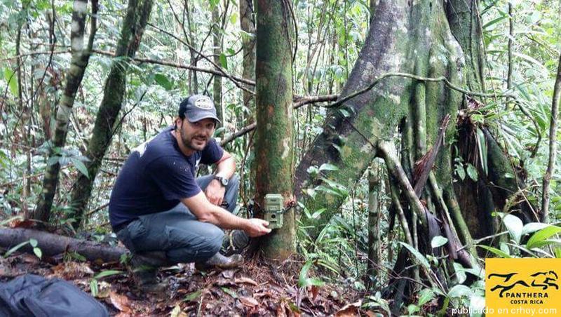 Pasión por los jaguares hace que tico gane reconocimiento internacional
