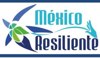 México y su lucha por ser una ciudad resiliente
