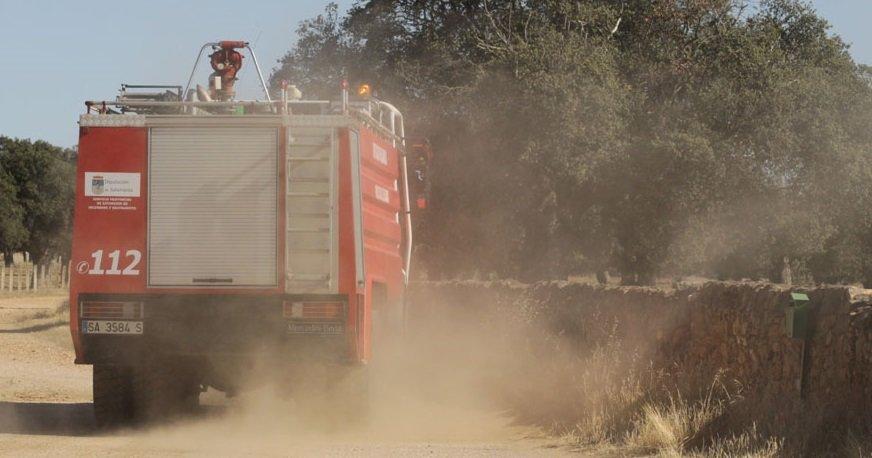 Un fuego en San Pedro de Rozados (Salamanca) arrasa 35 hectáreas de masa forestal y pasto