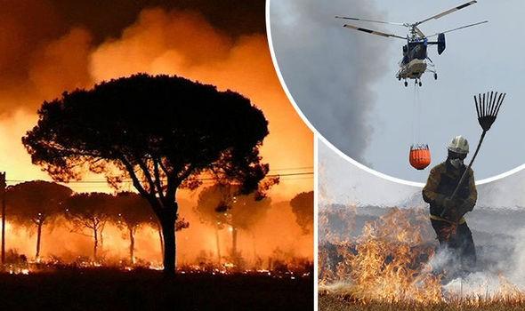 Doñana en grave peligro por un pavoroso incendio