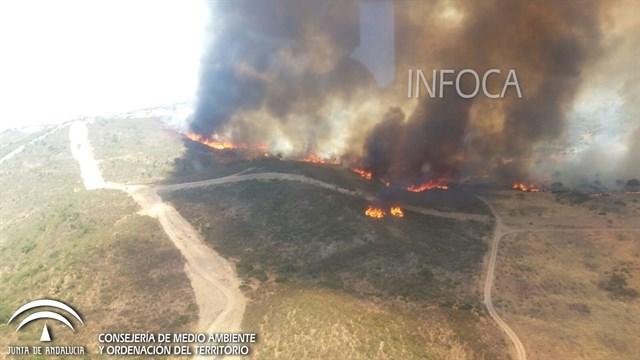 Medios aéreos del Ministerio se suman a la extinción del incendio en Castillo de las Guardas