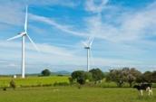 IMPSA obtiene préstamo del BID para plan de inversión en energía eólica en América Latina