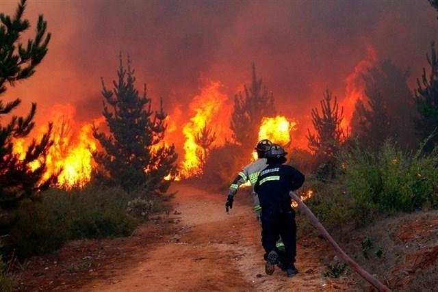 Declarada la época de peligro medio de incendios forestales en Extremadura