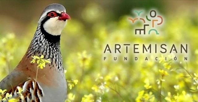 Fundación Artemisan pone en marcha un proyecto para recuperar la perdiz roja silvestre en España