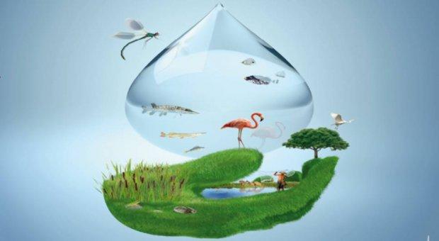 Dos de Febrero 'Día Mundial de los Humedales'
