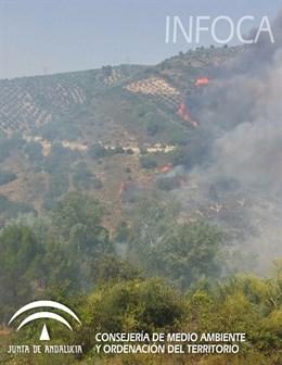 Controlado el incendio de Villanueva del Arzobispo (Jaén)