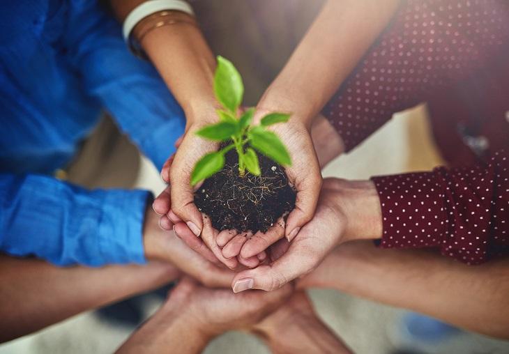 El Reglamento EMAS y la Declaración Ambiental