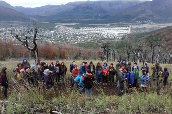 Argentina. Restauran con árboles nativos un área incendiada en el Cerro Otto
