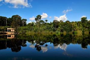 Líderes de opinión: 'Proyectos de infraestructura en el Amazonas y Río+20 encabezarán las noticias forestales en América Latina durante 2012'