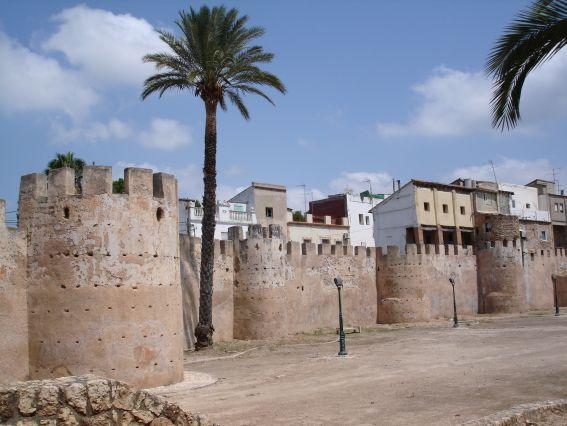 Alzira (Valencia) detecta residuos fitosanitarios en el agua de la localidad