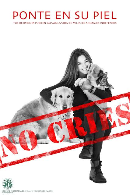 Malena Costa amadrina la campaña 'Ponte en su piel' para adoptar mascotas