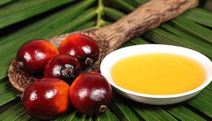 El peligro del aceite de palma