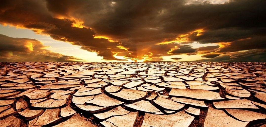 Día Mundial por la Lucha contra la Desertificación y la Sequía ...