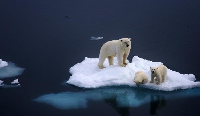¿El cambio climático en qué se diferencia del calentamiento global?