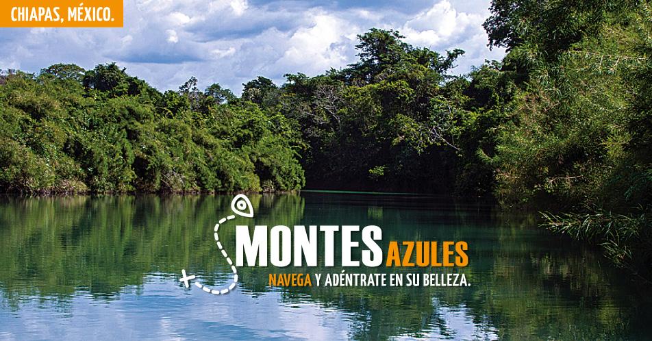 MONTES AZULES CHIAPAS PDF DOWNLOAD
