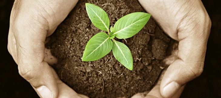 Máster en Calidad, Medio Ambiente y Prevención de Riesgos Laborales