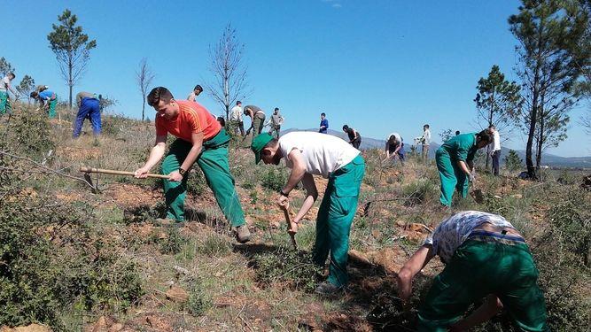 Alumnos estudian en Sierra de Gata la evolución del monte tras un incendio forestal