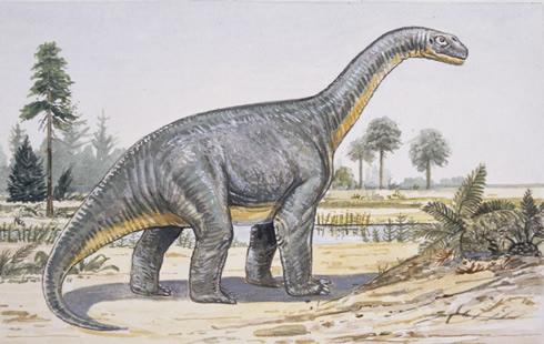 Los Dinosaurios Eran Reptiles De Sangre Caliente Los dinosaurios son un grupo de saurópsidos que aparecieron durante el período triásico. los dinosaurios eran reptiles de