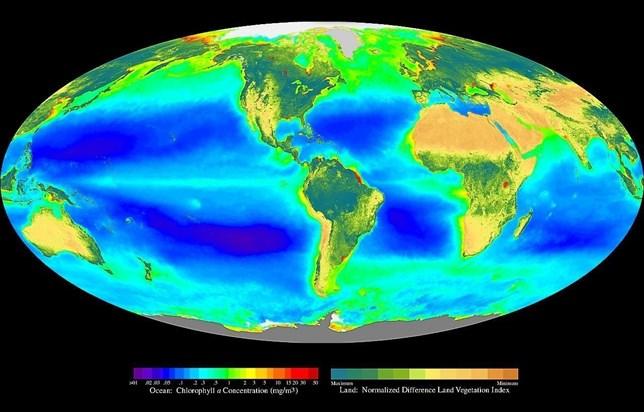 La fotosíntesis 'esperanza' del planeta