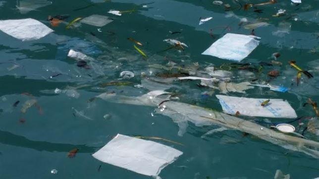 Las aguas de Cabrera repletas de plásticos