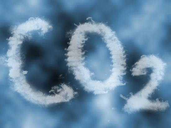 Ecosistemas terrestres ¿fuente o sumidero de carbono?