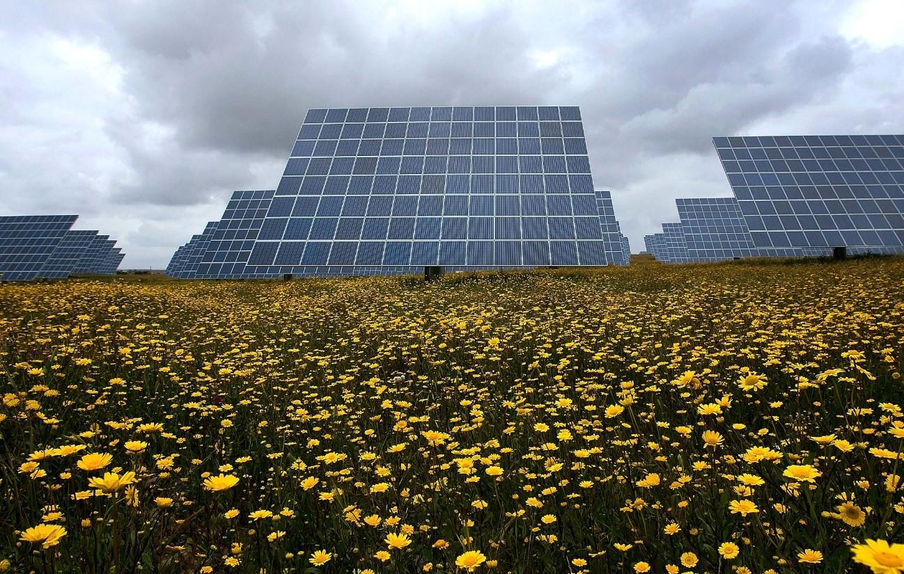 En Portugal proliferan los proyectos de parques solares