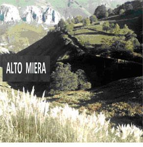 El 'incontrolado y alarmante' avance del plumero en Cantabria