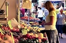 OMS pide prohibir los plaguicidas más tóxicos para las personas y establecer límites máximos en alimentos y en el agua