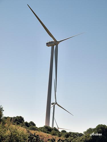Costa (CNE) plantea que las primas a las renovables no se costeen solo por el recibo de la luz