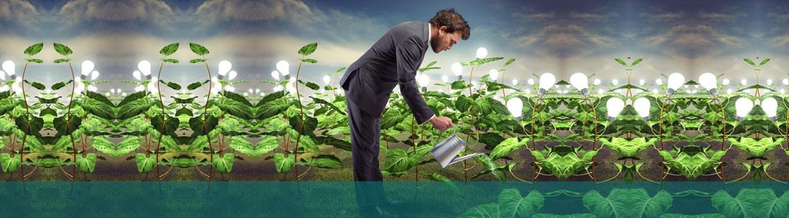 3 tecnologías verdes para imitar