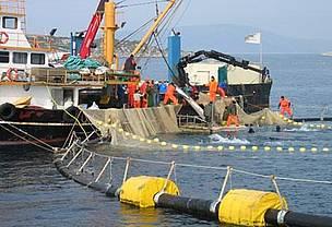 La pesca de marrajo al 'limite'