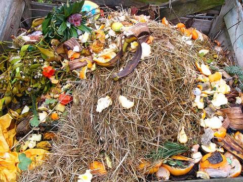 ¡Suecia necesita más residuos!