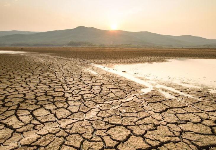 Juntos contra la crisis climática