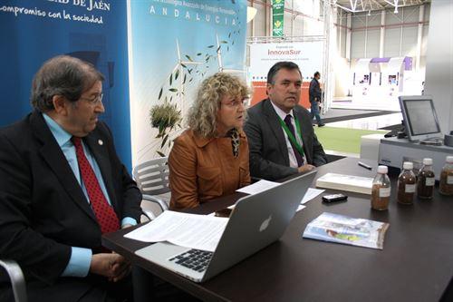UJA y Ctaer alianza para el aprovechamiento de la biomasa del olivar