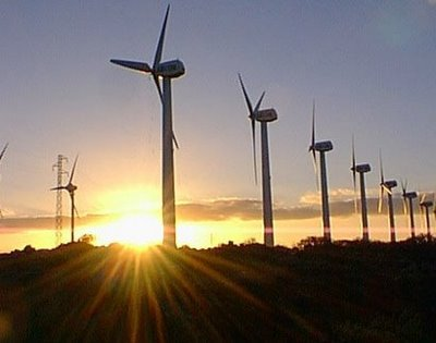 Canarias, luz verde a la autorización administrativa para la adjudicación de potencia eólica