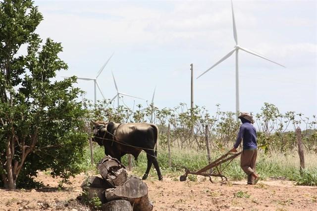 Iberdrola toma el control de 288 MW eólicos en Brasil
