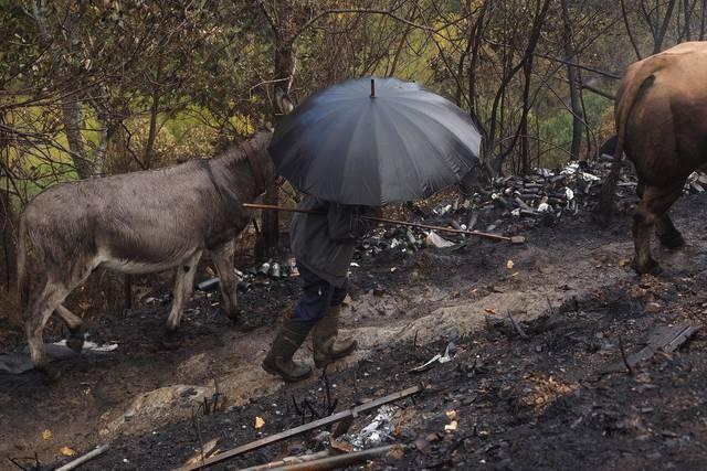 Juncker ofrece a Rajoy ayudas europeas para cubrir daños por los incendios