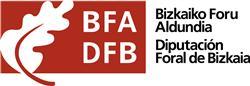 Bizkaia aprueba dos líneas de ayudas en materia de energía dirigidas a las administraciones locales y a las familias