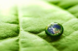 Los 20 puntos 'calientes' sobre el medio ambiente