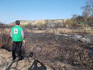 El 'intolerable' incendio de las Islillas en el Parque Regional del Sureste