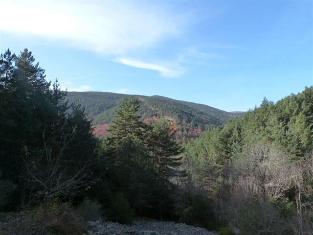 El Parque Natural Sierra de Cebollera programa un paseo guiado entorno a la Ermita de Lomos de Orios para el sábado