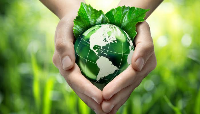 Máster en medio ambiente y diagnosis ambiental, reserva aquí tu plaza