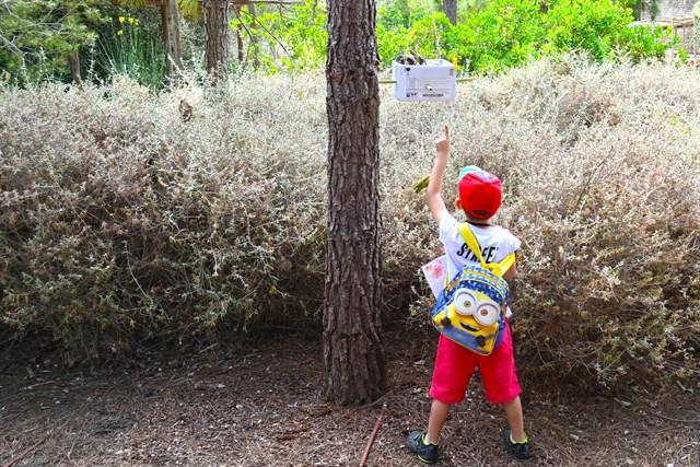 Terra Natura instala casas de insectos para proteger los ecosistemas y la biodiversidad